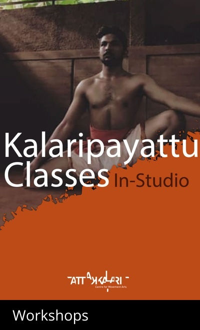 Kalaripayattu classes