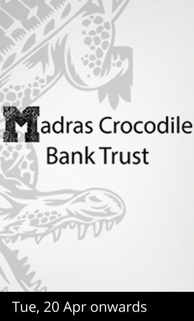Night Safari at Madras Crocodile Bank