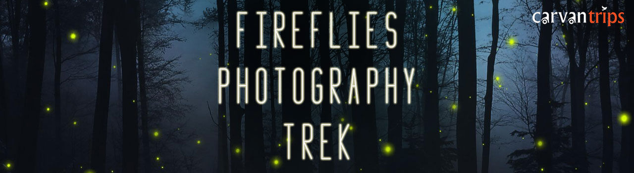 Fireflies Photography Special Trek in Ticket Counter, Panvel Railway Station