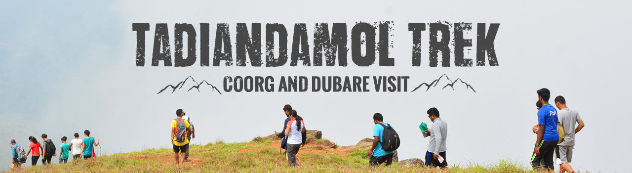 My Hikes - Tadiandamol Trek Coorg and Dubare Visit in Silk Board: Bengaluru