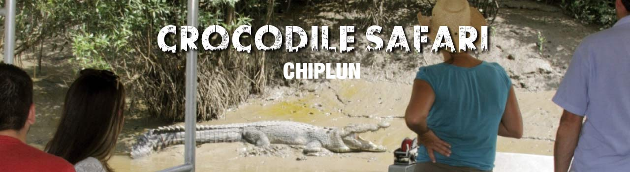 Crocodile Safari - Chiplun in