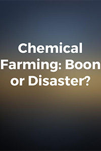 Chemical Farming: Boon or Disaster?