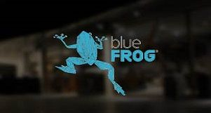 head-to-blue-frog-in-pune-for-fun-events