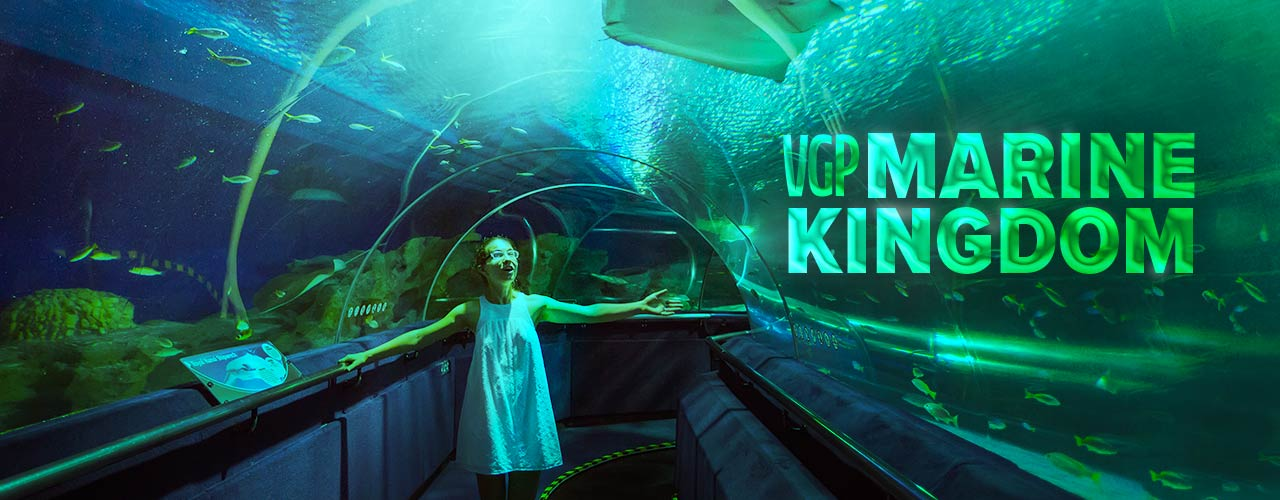 VGP Marine Kingdom Ticket Bookings, Entry Fee Price, Timings & More